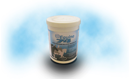 Equine 74 Gastric Conditioner - 6kg Tub with Free Delivery