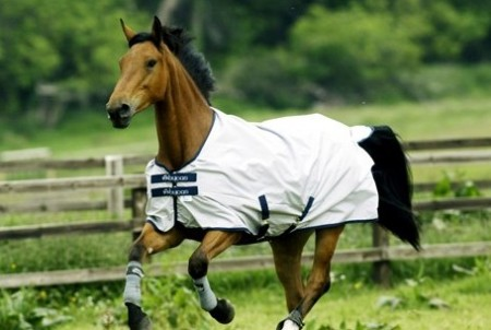 Bucas SunShower Ultra Lightweight Turnout Rug
