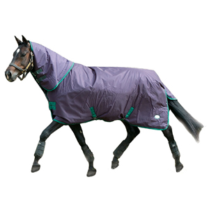 "FAL Bulldog 350g Turnout Rug with Detachable Neck 6'6"" - Sale"